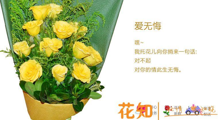 道歉黄玫瑰